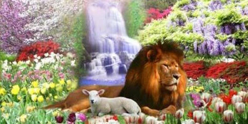 Het Koninkrijk van God is niet iets vaags